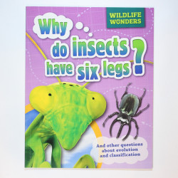 Why Do Insects Have Six Legs